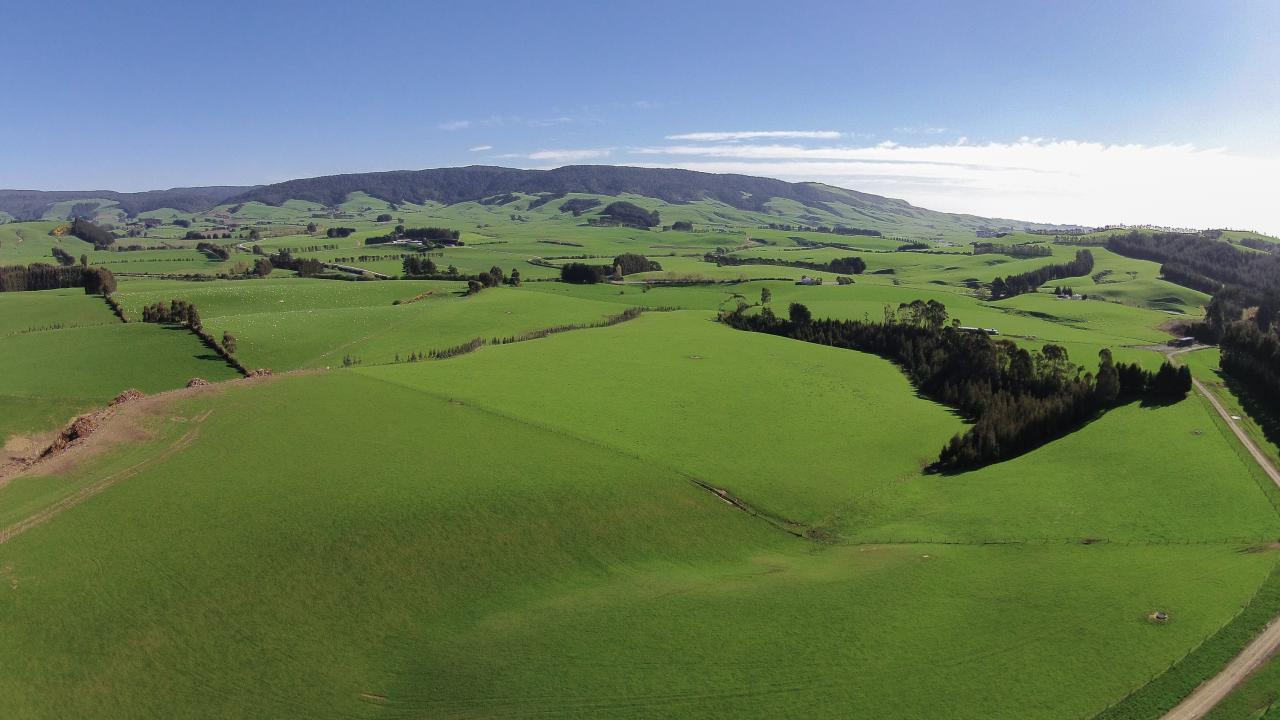 Farm / Ranch / Plantation for Sale at Large Scale Dairy Grazing & Finishing Property New Zealand